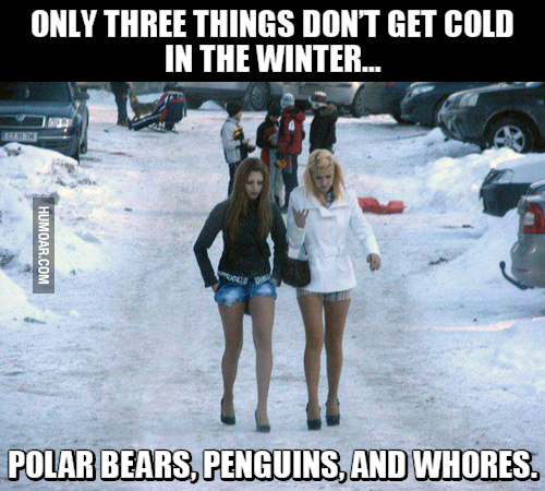Scantily clad whores in skimpy clothes. Prostitutes going for a slut walk. Only three things don't get cold in the winter, Polar Bears, Penguins, and Whores